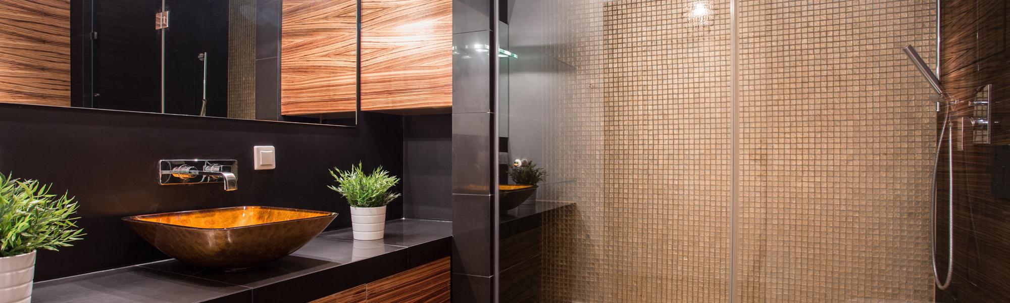 Single Frameless Shower Doors Single Shower Door Houston Tx